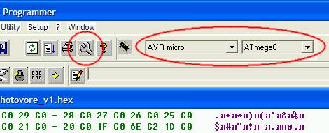 Configure COM Port and AVR